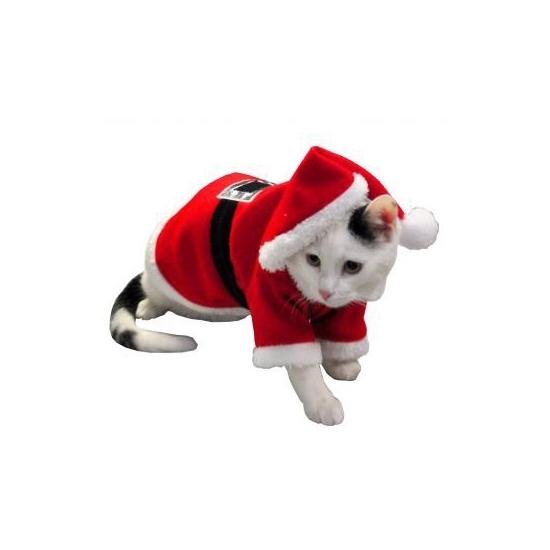 Huisdier kerstman kostuum