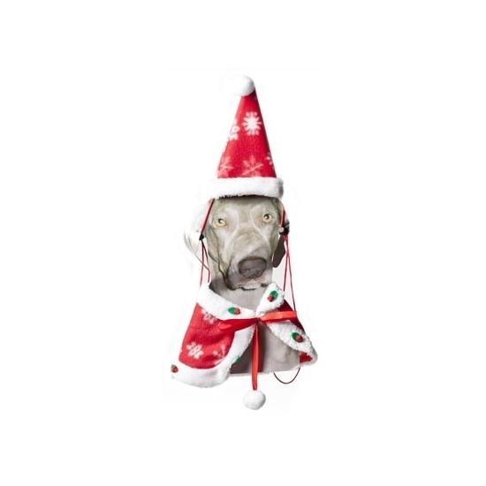 Kerstkleding voor de hond cape en muts