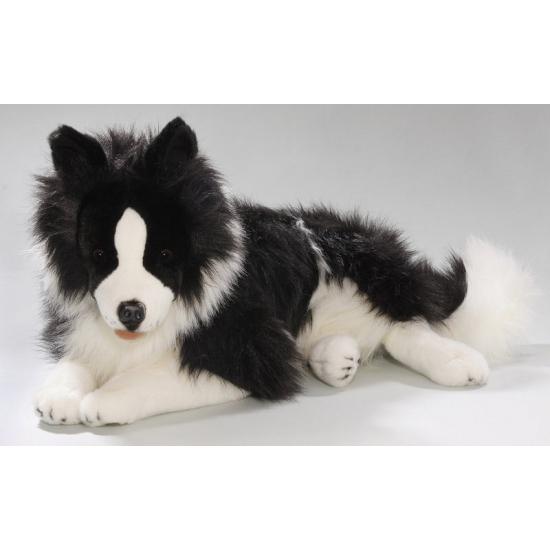 Knuffel Border Collie hond van 60 cm (bron: Feestwinkel Fun en Feest)