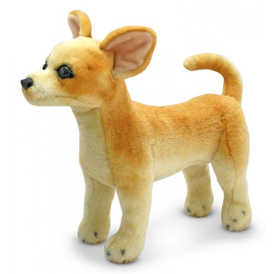 Knuffeldier Chihuahua hond 38 cm (bron: Feestwinkel Fun en Feest)