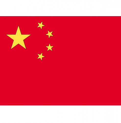 Stickertjes van vlag van China (bron: Feestwinkel Fun en Feest)