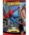 Spiderman spider sense poster  61 x91,5 cm