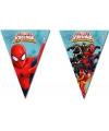 Spiderman Warriors vlaggenlijnen 2,3 meter