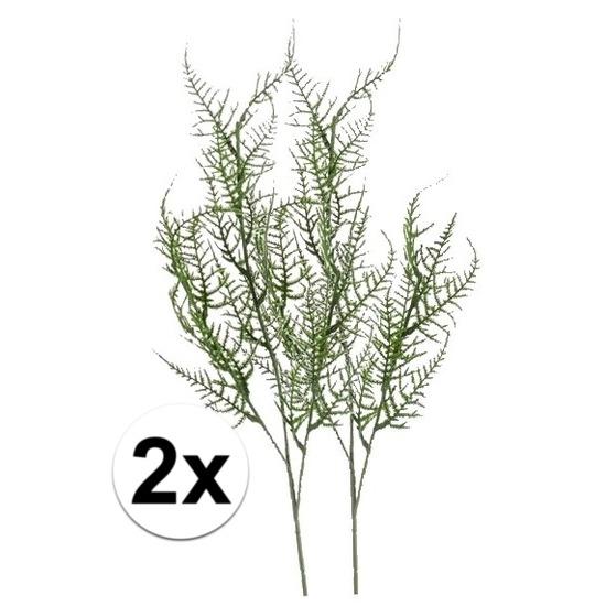 2x Groene Asparagus kunsttak 73 cm Groen