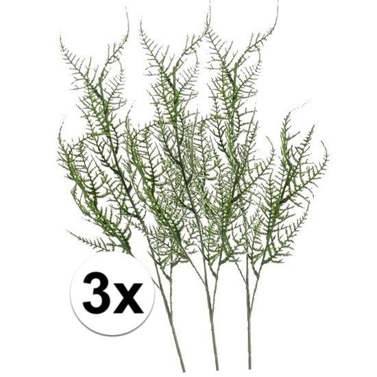 3x Groene Asparagus kunsttak 73 cm Groen
