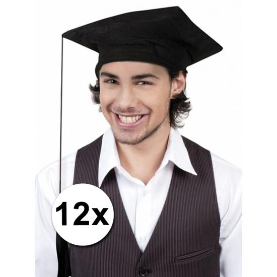 Geslaagd/ afstudeer hoedjes zwart 12x