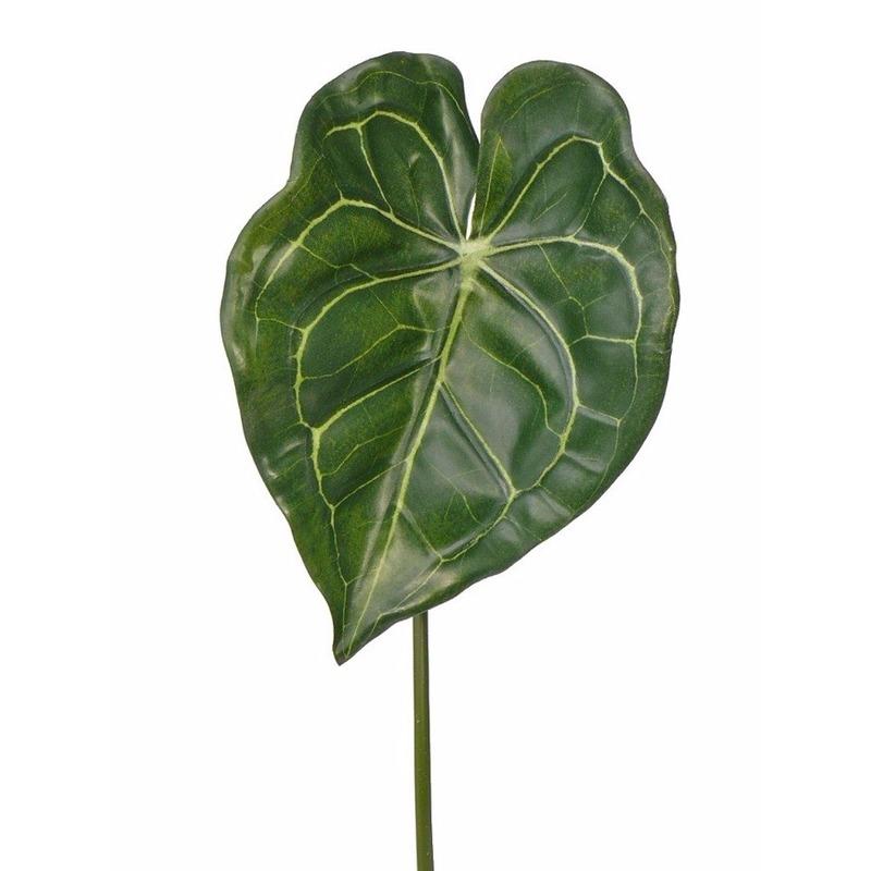 Groene Anthurium tak 67 cm Groen