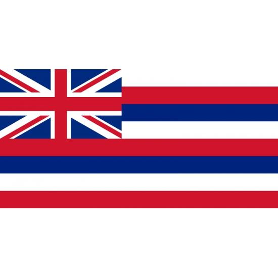 Vlag Hawaii 90 x 150 cm Multi