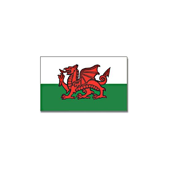Vlag Wales 90 x 150 cm Multi