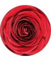 Onderzetters met rode roos 10 st