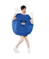 Blauw snoep kostuum volwassenen S Blauw