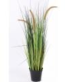 Kunst grasplant bloeiend 100 cm