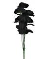 Zwarte rozen boeket 12 stuks