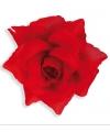 Rode rozen broches