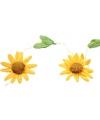 Gele zonnebloemen slingers