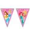Disney Princess slingers 2,3 m
