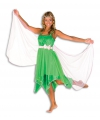 Elfjes jurk groen dames 38 (M) Groen