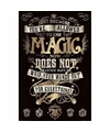 Harry Potter Magie maxi poster 61 x 91 cm