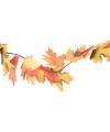 Herfstslinger gekleurde bladeren150 cm