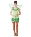 Groen elven jurkje voor dames