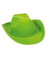 groene cowboy party hoed