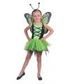 Groene vlinder feeen jurkje voor meisjes 8-10 jaar Groen