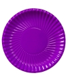 Paarse wegwerp borden 29 cm