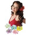 Bloemen clip