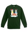 Kersttrui met 2 pinguin vriendjes groen voor jongens en meisjes 12-13 jaar (152/164) Groen