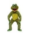 Kikker pak voor volwassenen One size Groen