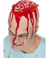 Hersenen pruik/hoed