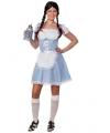Lichtblauw Oktoberfest jurkje voor dames M Multi