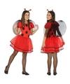 Lieveheersbeestje verkleedjurkje voor meisjes 140 (10-12 jaar) Multi