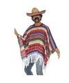 Mexico verkleed kleding poncho met hoed One size Multi
