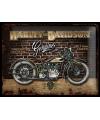 Tinnen plaatje Harley Davidson Genuine 30 x 40 cm