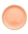 Perzik kleur wegwerp bordjes 23 cm