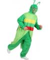 Sprinkhaan pak voor volwassenen One size Groen