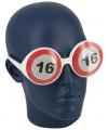 Verkeersbord bril 16 jaar