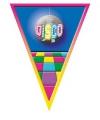 Vlaggenlijnen Disco 5 meter