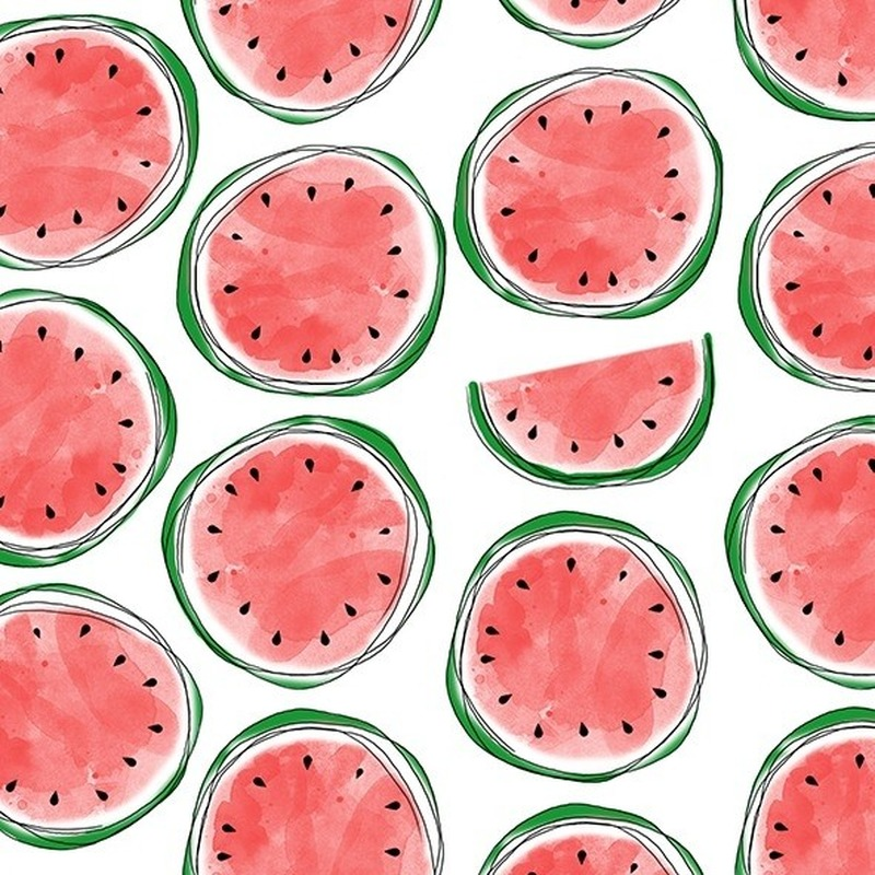 20x feest servetten met watermeloen opdruk 33 cm -