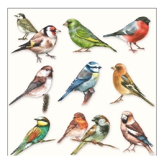 60x Servetten tuinvogels 3-laags -