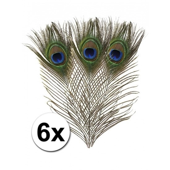 6x Pauwenveren 25 cm
