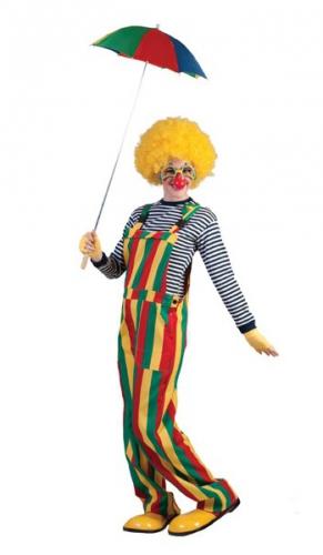 Clown tuinbroek 48-50 (S/M) Multi