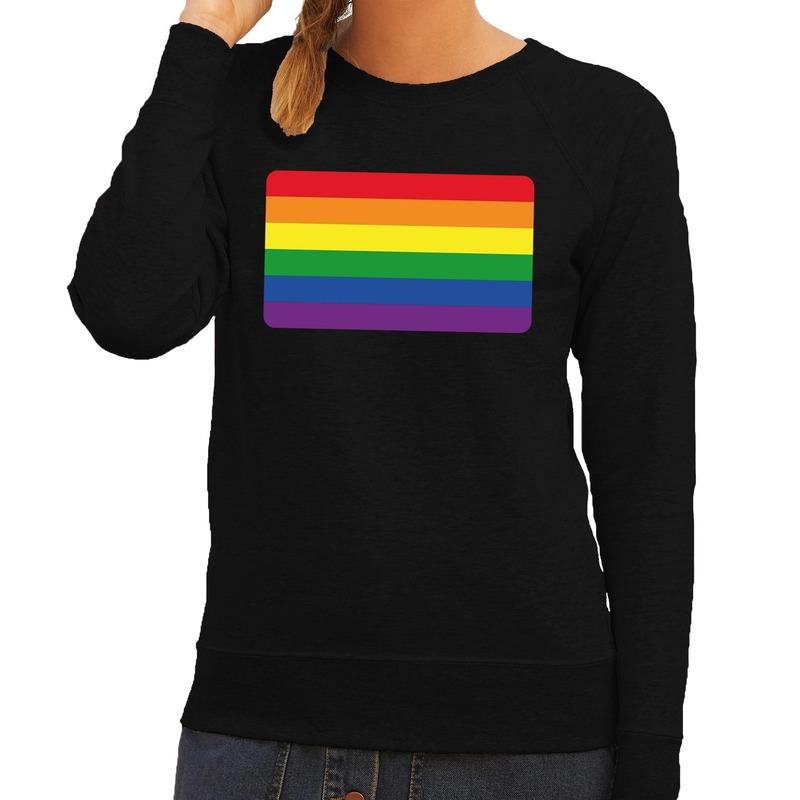 gay pride regenboog vlag sweater zwart heren shirt | T shirt