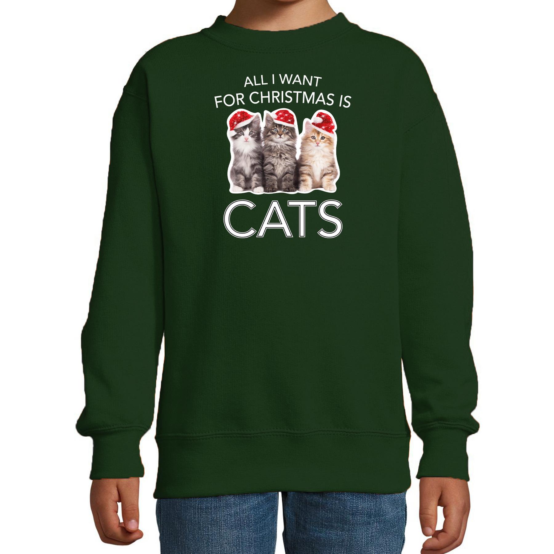 Groene Kersttrui - Kerstkleding All I want for christmas is cats voor kinderen 14-15 jaar (170/176)