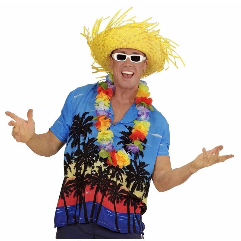 Hawaii kostuum blauw overhemd voor heren M/L Multi
