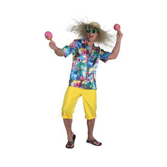 Hawaii shirt voor heren 50-52 (M/L) Multi