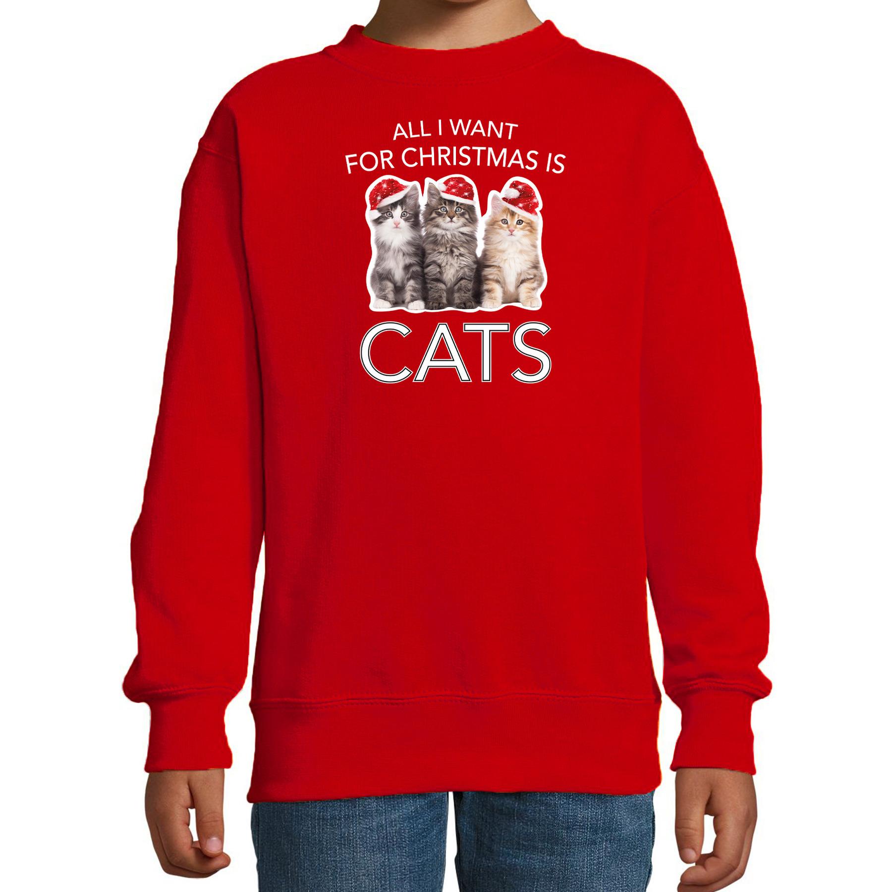 Rode Kersttrui - Kerstkleding All I want for christmas is cats voor kinderen 12-13 jaar (152/164) -