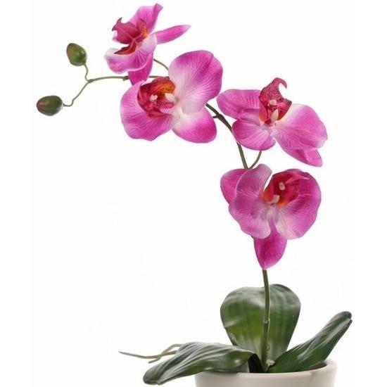 https://www.fun-en-feest.nl/img/large/roze-orchidee-phalaenopsis-kunstplant-44-cm-voor-binnen/10052/551.jpg